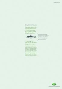 Landrover Salmon